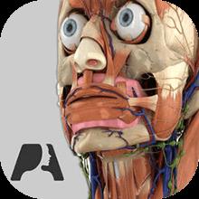 نرم افزار Pocket Anatomy