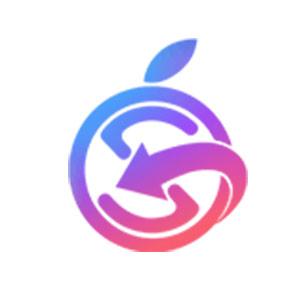 انجمن سیبانه